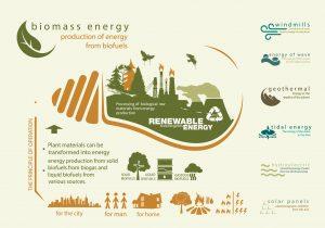 Biomass Infographic